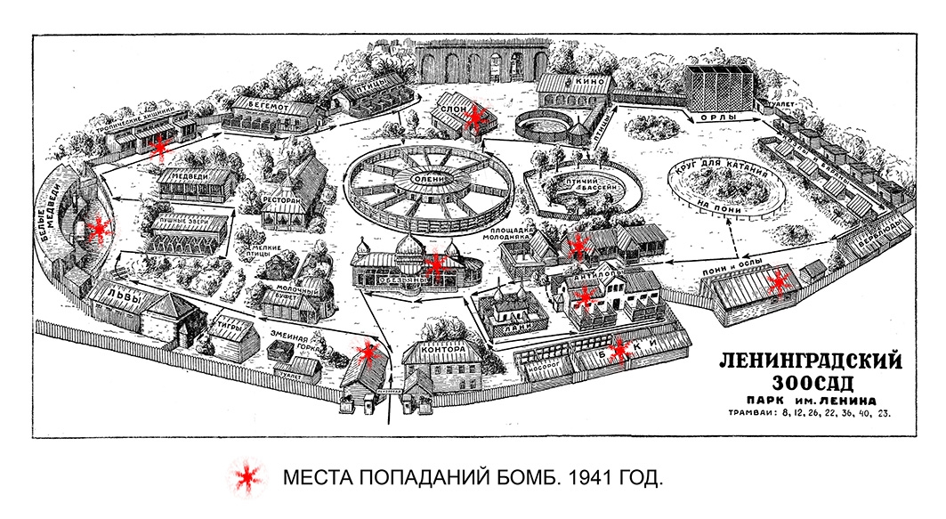 на стрелке Васильевского